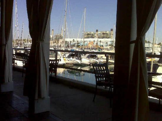 The Portofino Hotel & Marina, A Noble House Hotel: Lunch view at Baleen, Redondo Beach, CA