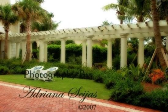 Bilde fra West Palm Beach