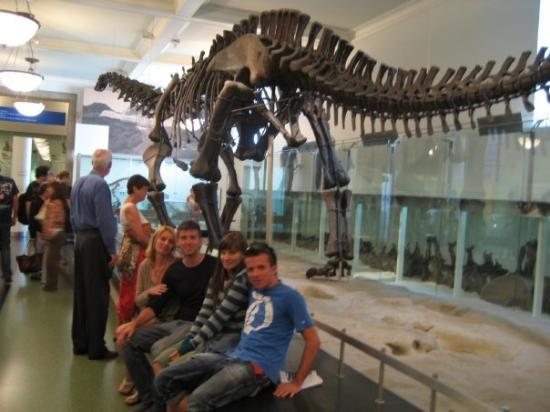 American Museum of Natural History: hahaha:]