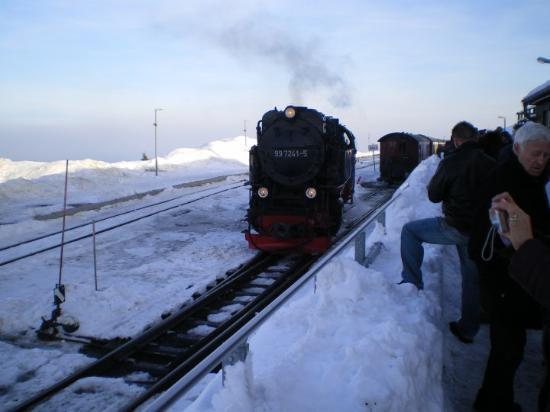Schierke, Tyskland: Brockenbahn!