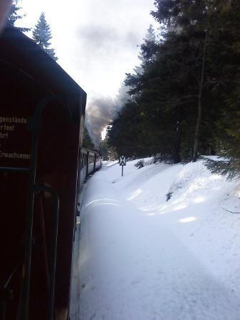 Schierke, Tyskland: Mit der Brockenbahn geht es auf 1142 Meter Höhe!!