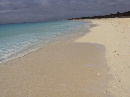 Sandos Playacar Beach Resort: La playa del hotel, amplia y cuidada