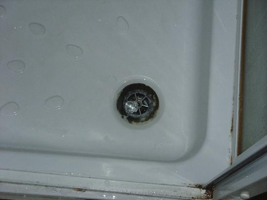 The Merchants Hotel: Shower Plug