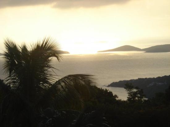 St. John: Vista desde el cuarto...