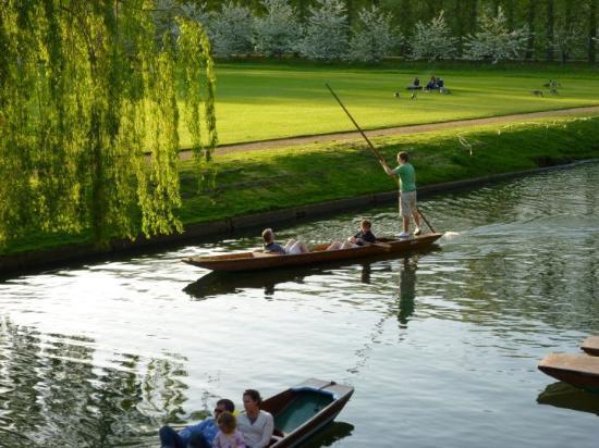 Cambridge Spring