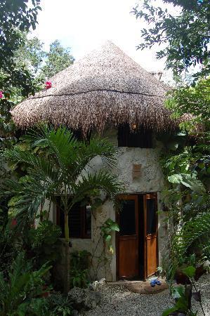 La Selva Mariposa: Lou's house