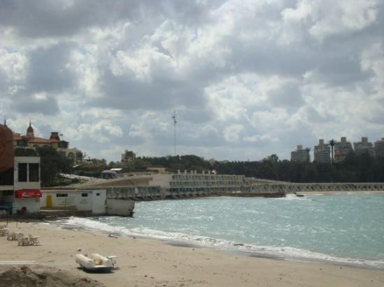 Bilde fra Alexandria