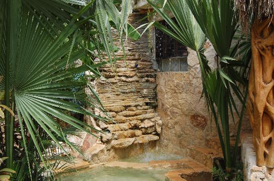 La Selva Mariposa: Waterfall at villa