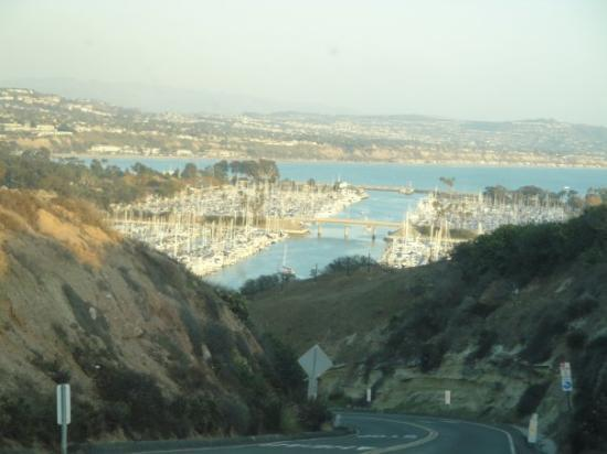 Another view of the marina Dana Point.