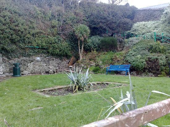 Summerhill Glen : The glen in winter