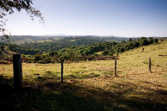 SummerHills Retreat Byron Bay: Beautiful views and walks on the property