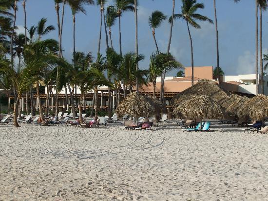 Secrets Royal Beach Punta Cana: View of beach, dining area on left