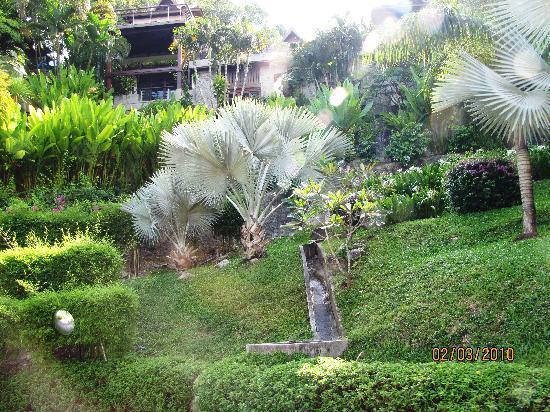 Ayara Hilltops Resort and Spa Surin Beach: scenic hill