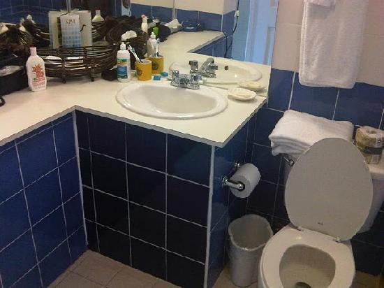 Gamboa Rainforest Resort: Historic Villa - Nice Toilet
