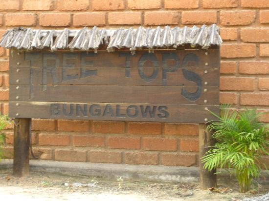 Treetops Bungalows: Tree Tops :)
