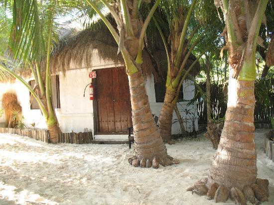 Playa Mambo: Our Cabana (Fucsia)
