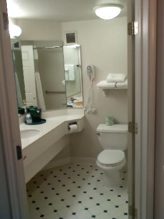 La Quinta Inn & Suites Greenville Haywood: Bath