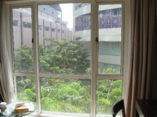 Capitol Hotel: window view