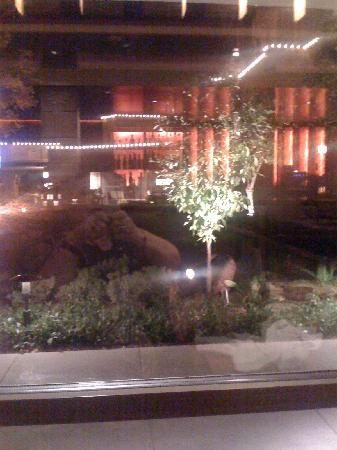 Frank & Albert's: The view from our table outside of the architecture and landscape