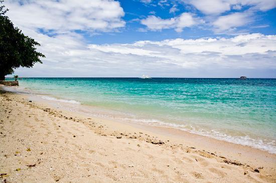 Alegre Beach Resort: The Beach