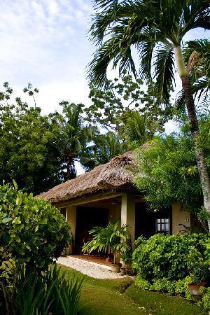 Alegre Beach Resort: The Hut