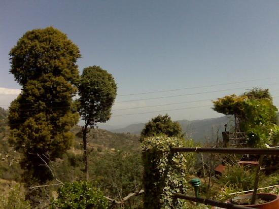 Mountain Trail Resort: View from My sitout area