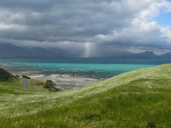 Kaikoura Photo