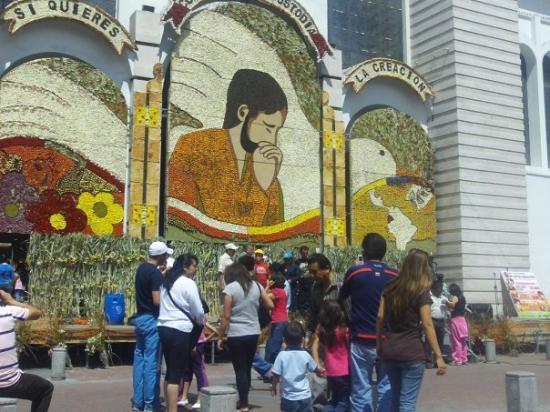 Bilde fra Ambato