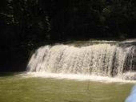 Bilde fra YS Falls
