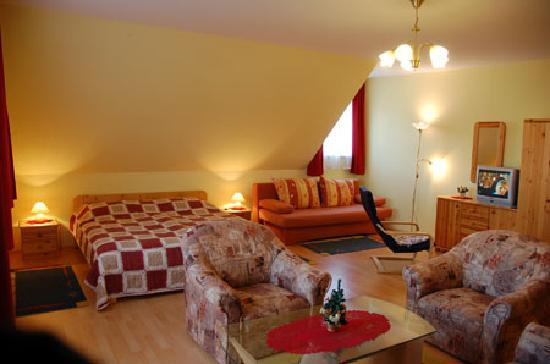Brigitte's Guesthouse and Apartments: Apartment - room
