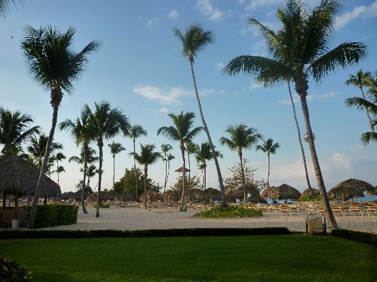 Iberostar Hacienda Dominicus: beach @ hotel