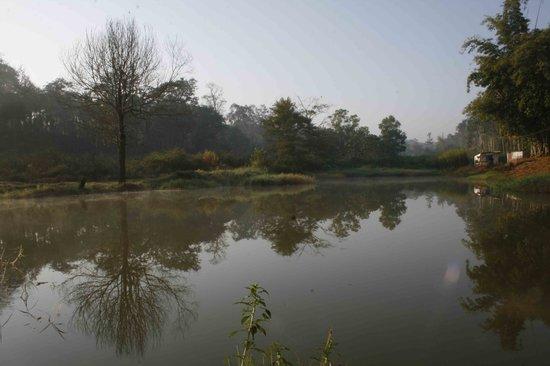 Srimangala, India: Waterbody