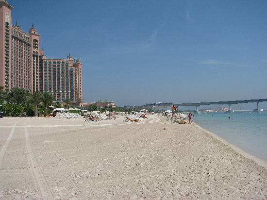 Beach Picture Of Atlantis The Palm Dubai Tripadvisor