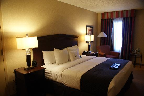 Doubletree by Hilton Atlanta Roswell: My Room