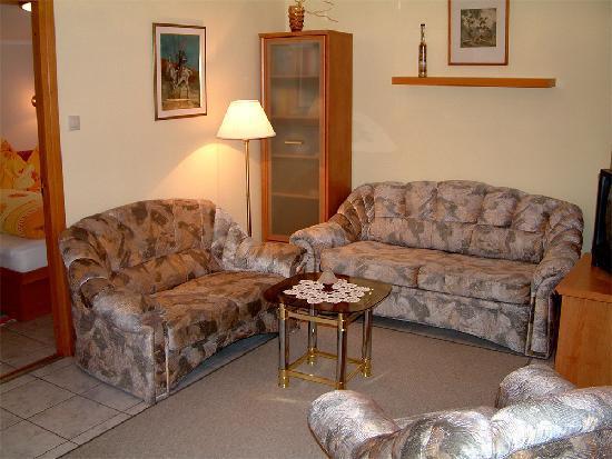 Feigenbaum Haus: Schlafsofa im Wohnzimmer für eine extra Person.