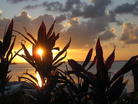 Terraneo: Sunset