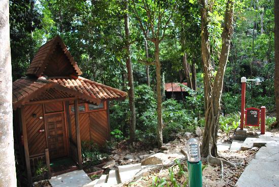 Berjaya Langkawi Resort - Malaysia: view of our chalet