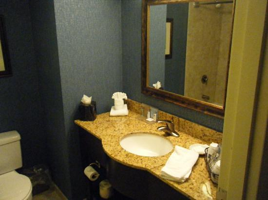 Hampton Inn Jacksonville/Ponte Vedra Beach-Mayo Clinic Area: Bathrooms (and rooms) well appointed