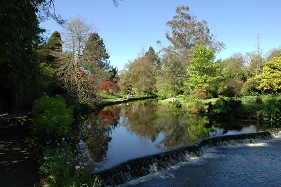 Ashford, Ireland: Mount Usher Gardens
