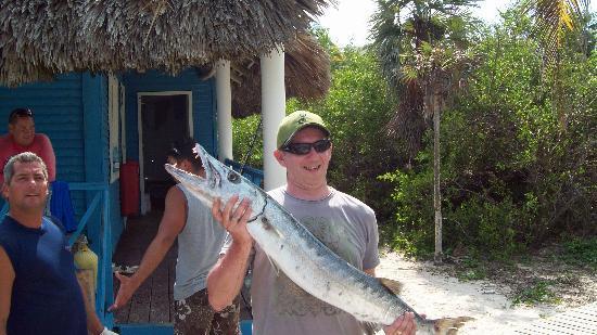 Melia Cayo Coco: A 33Lb Barracuda caught of a catamaran hired from the beach - 40cuc each - bargain