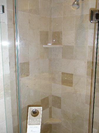 Vineyard Hotel: Shower