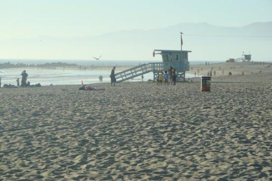 Bilde fra Venice Beach