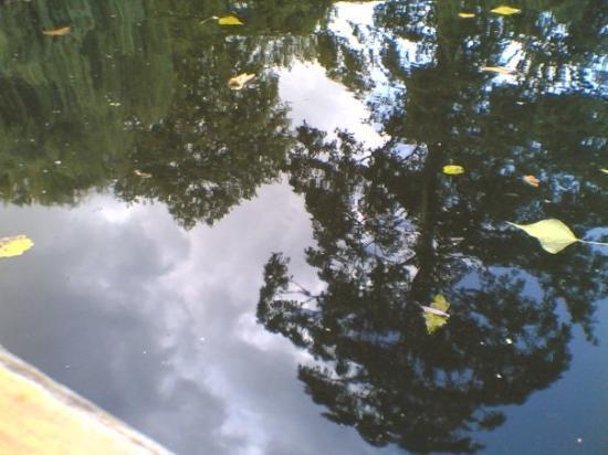 Cambridge, UK: Punting Tour - 3  The water was freeeezing :-|