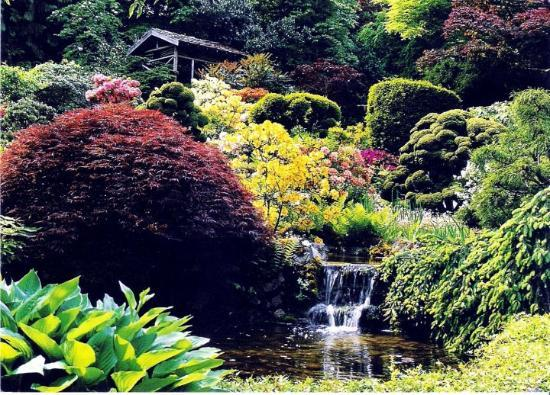 Victoria, Kanada: Butchart Gardens - flowers everywhere