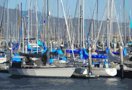 Santa Barbara, CA: Bluetops