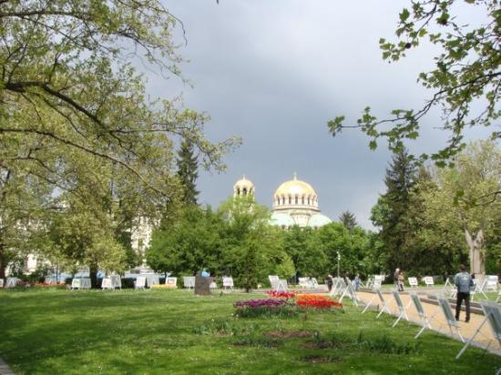 Bilde fra Sofia