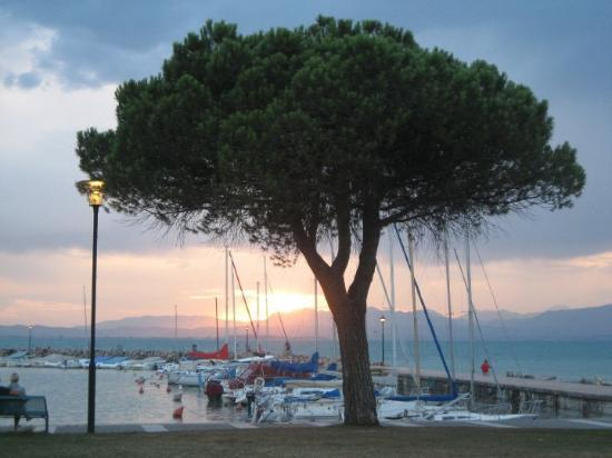 Lazise, Italia: Gardasee