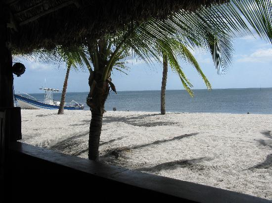 Hotel Playa Blanca Beach Resort: Vue du restaurant de la plage