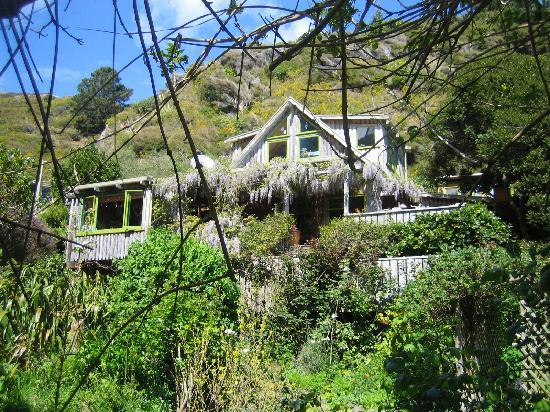Ngaio Bay Ecostay B&B: Ngaio Bay homestay from the garden