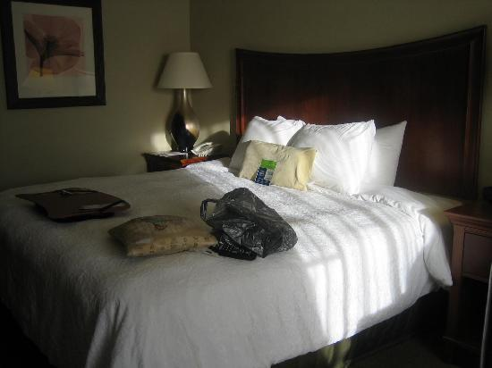 Hampton Inn & Suites Albany Airport : King Bed